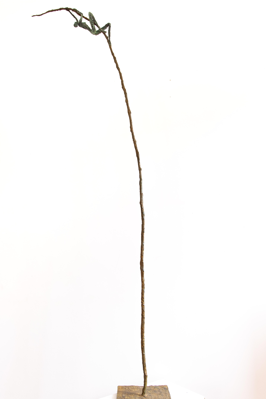 fil de fer 2 -BRONZE